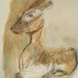 deer watercolor painting