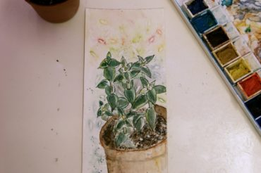 Cactus Line and Wash Video
